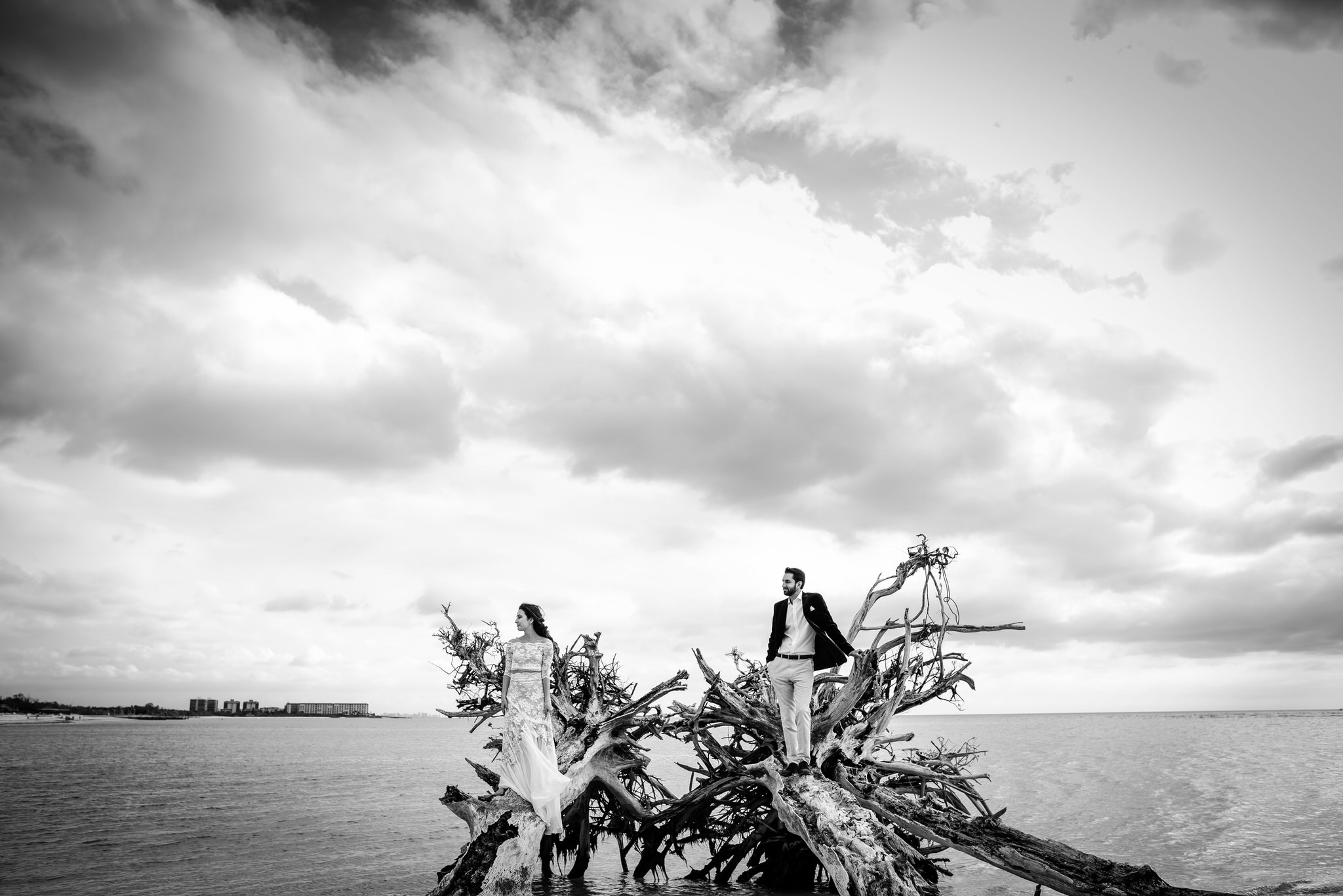 Lover's Key State Park Wedding Portrait at the Drift Woods